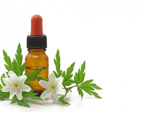 Bachlüten in der Pipettenflasche mit Blüten