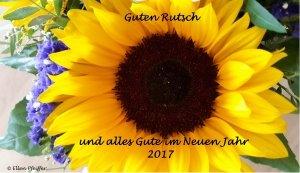 Sonnenblume mit Glückwunsch Guten Rutsch und alles Gute im Neuen Jahr 2017